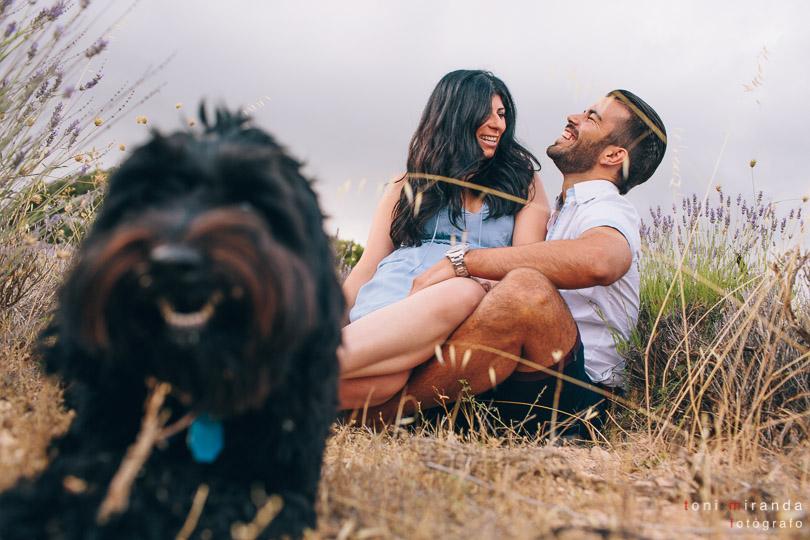preboda en el campo con perro
